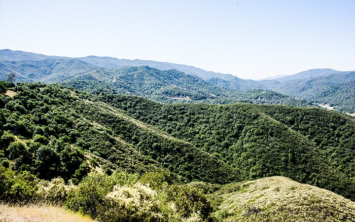 Quail Ridge Reserve 2