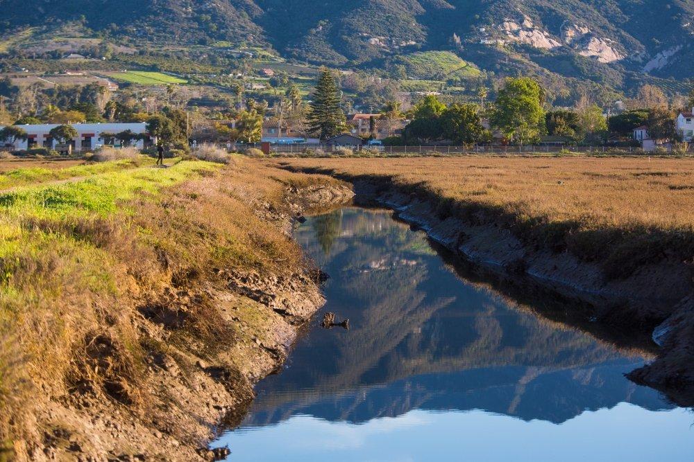 marsh recovery