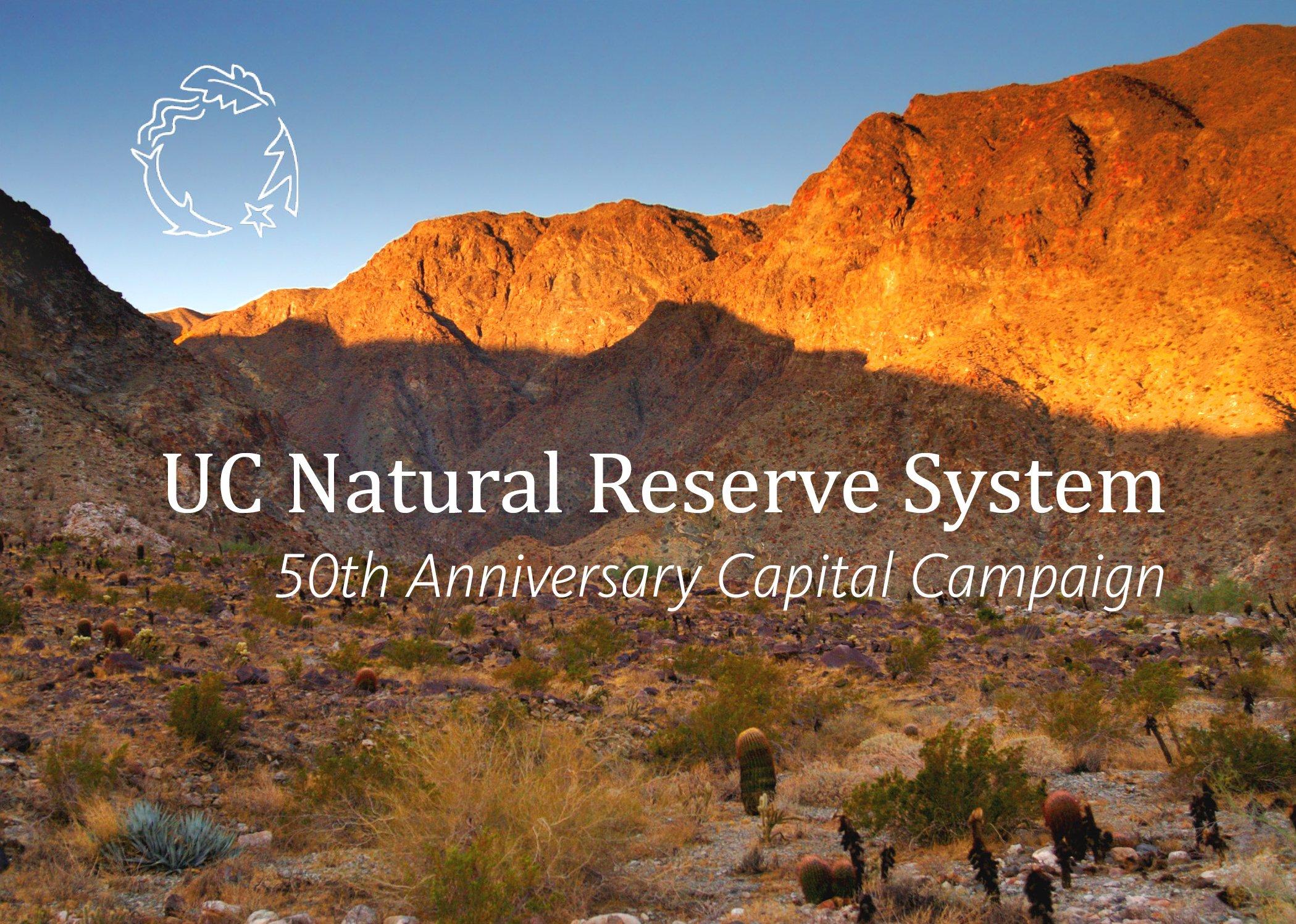 50th Anniversary Capital Campaign