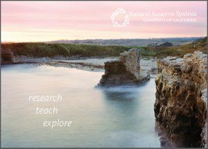 Younger Lagoon postcard
