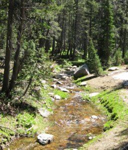 Sierra stream drought