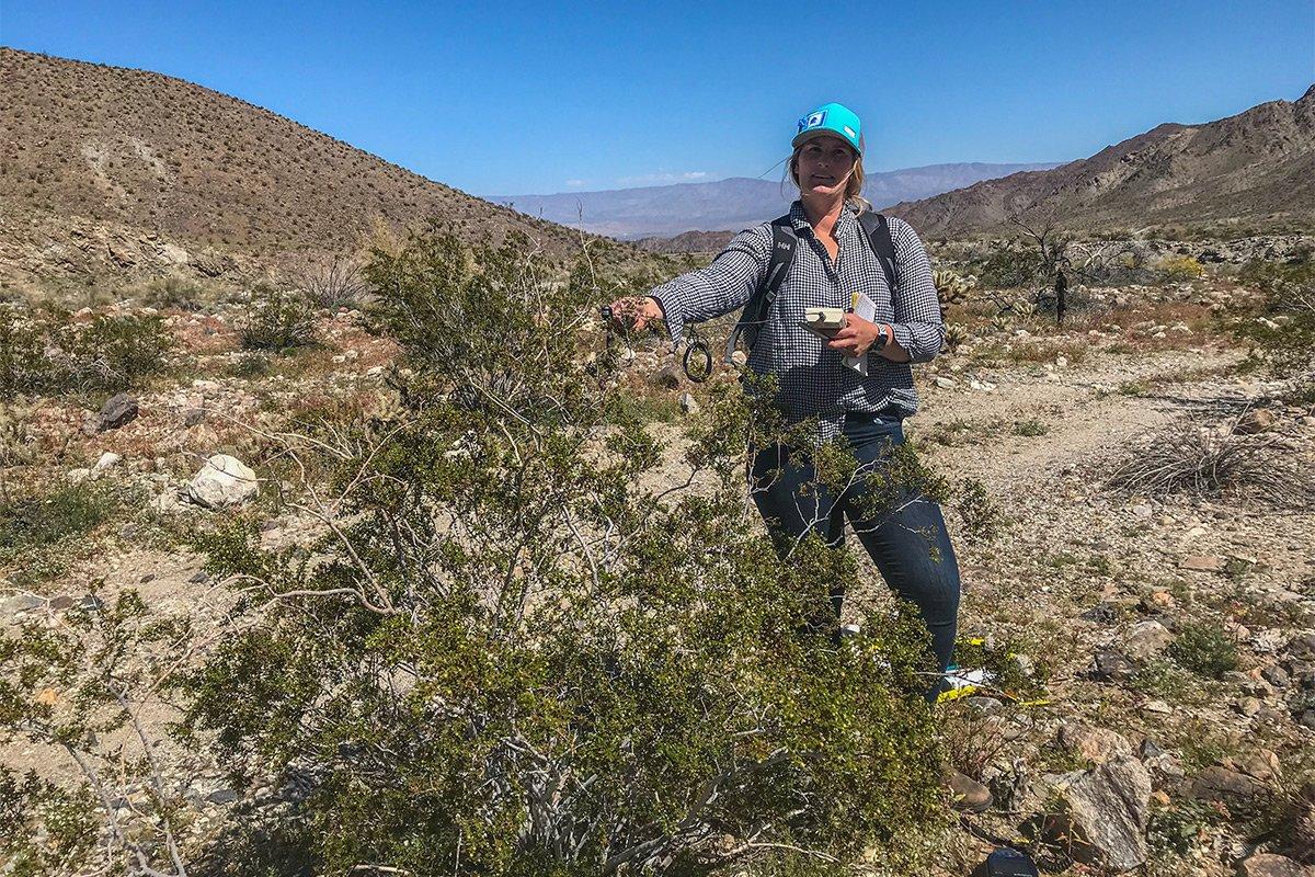 Kelly Easterday Deep Canyon