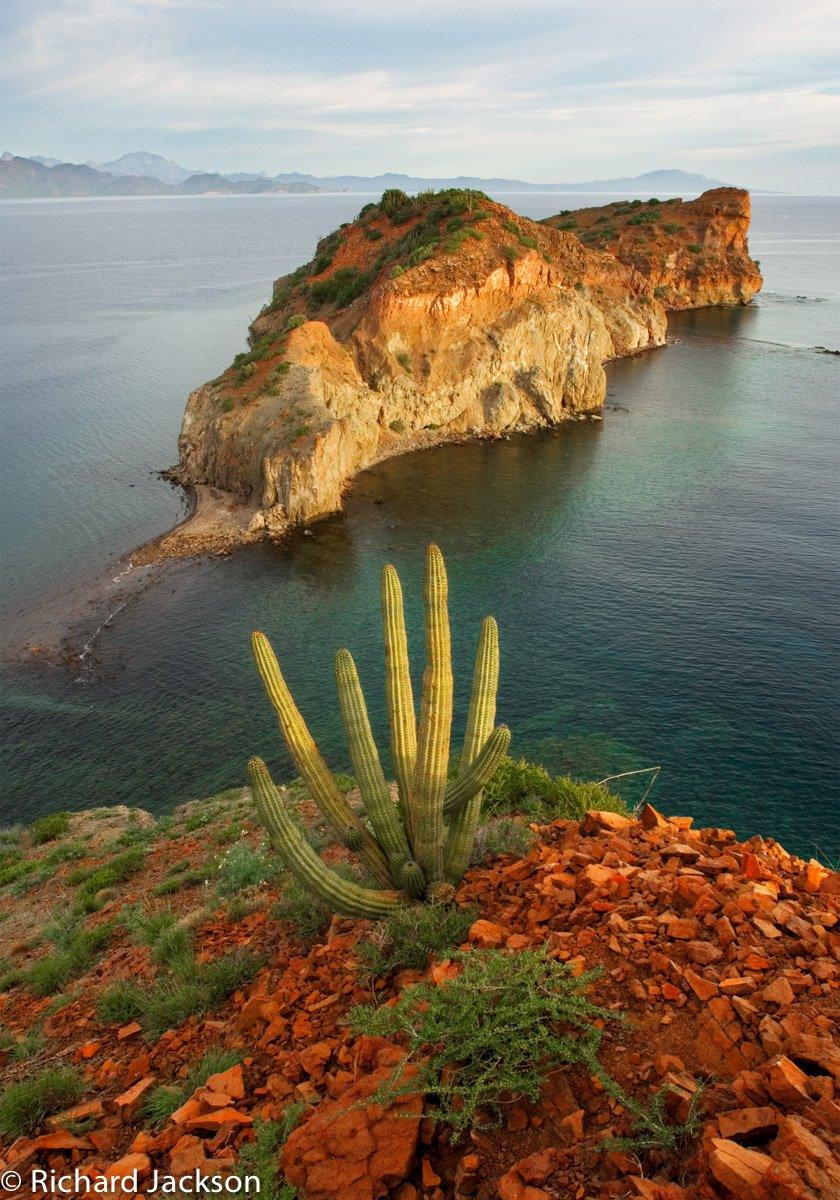 UC Natural Reserve System gains sister reserve in Baja California Sur 6