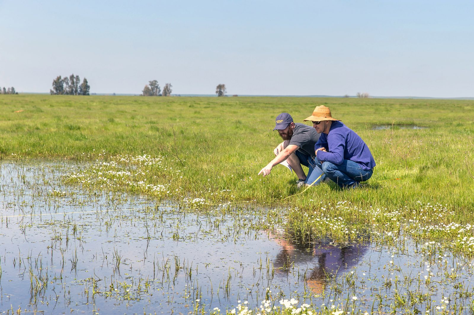 Field station planned for UC Merced's Vernal Pools and Grassland Reserve 12