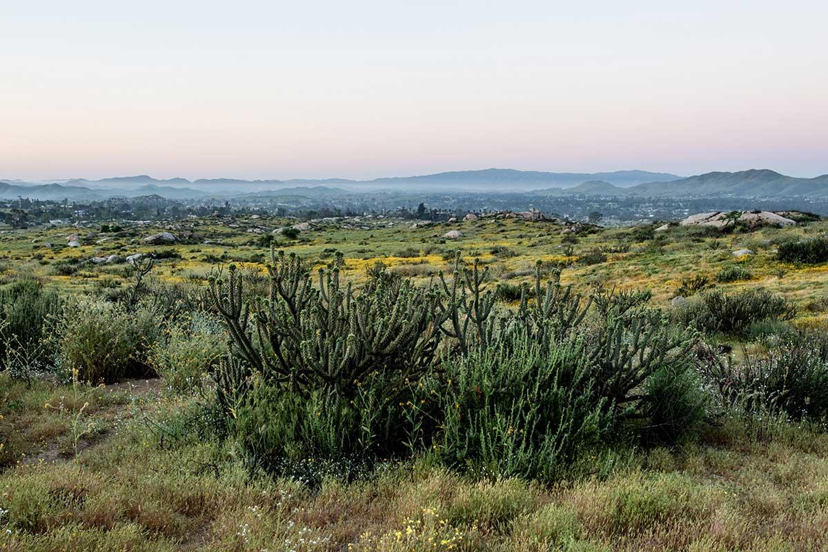 Motte Rimrock Reserve 2