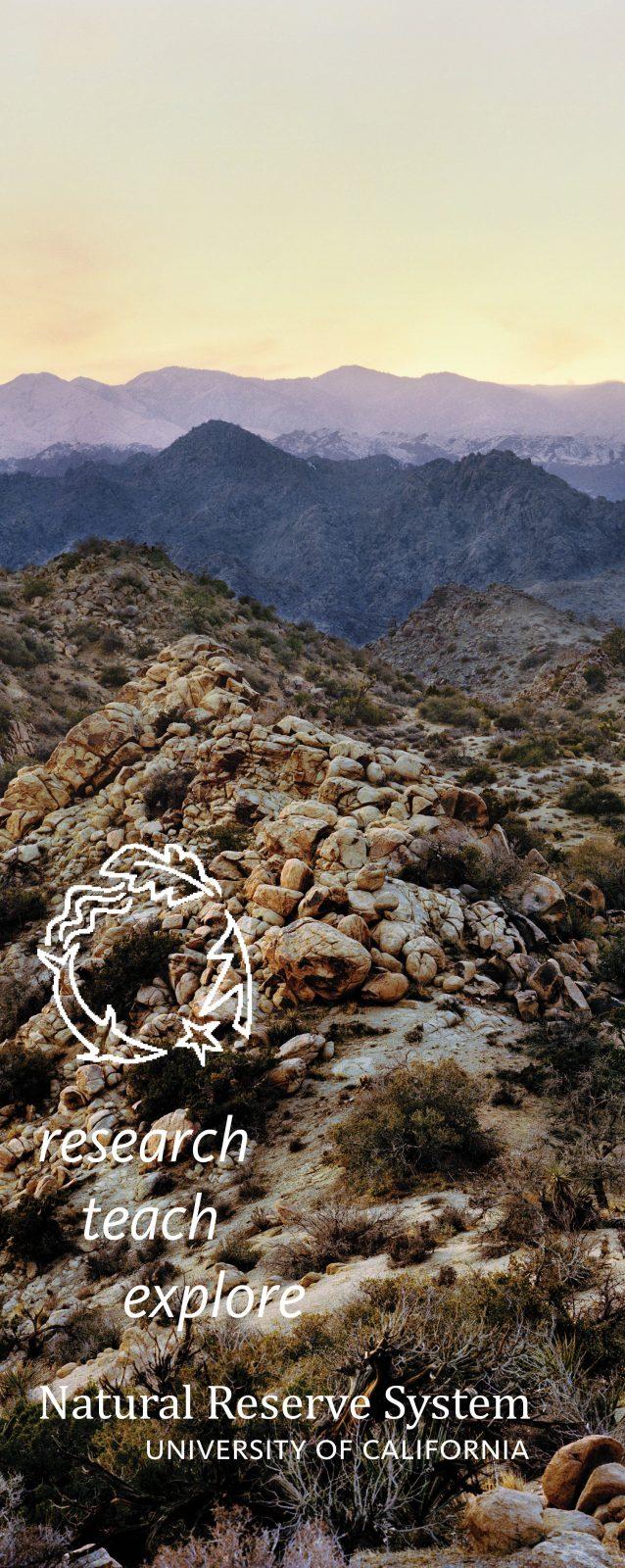 Burns Piñon Ridge Reserve