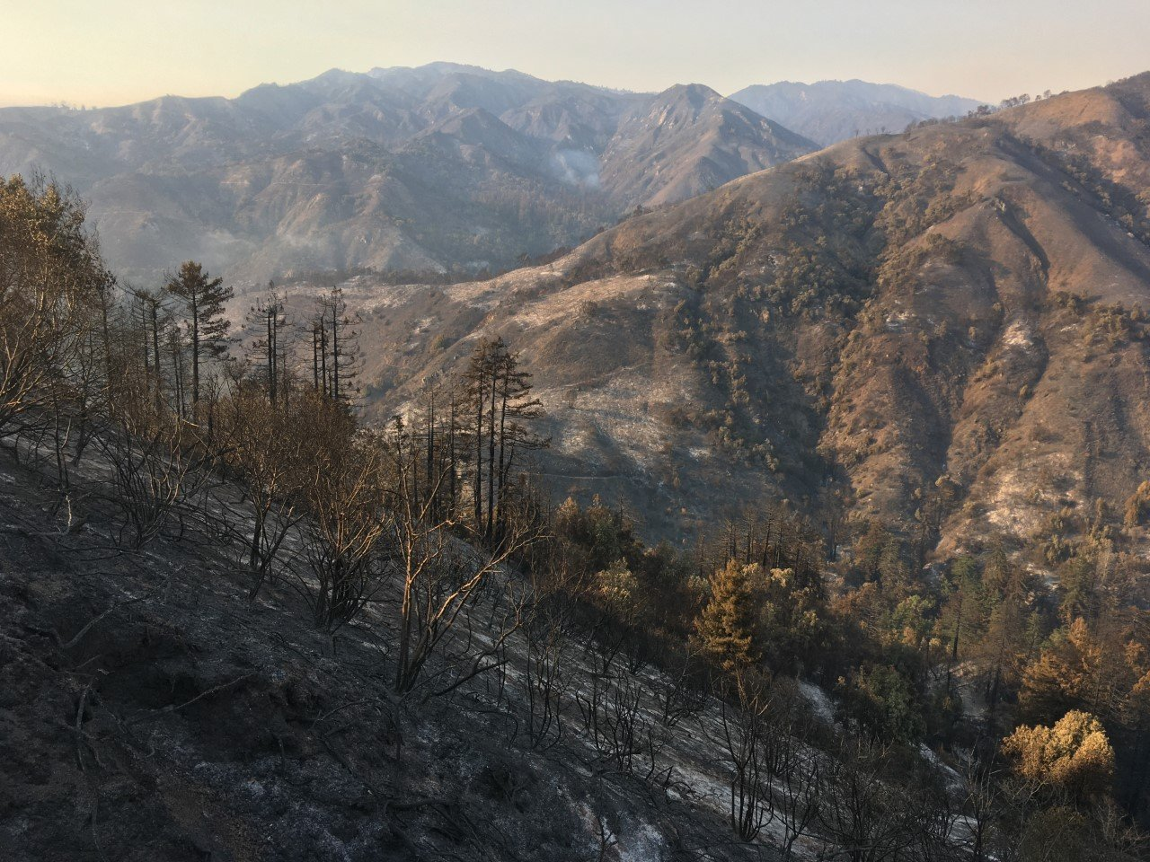 2020 wildfires burn six UC Natural Reserves; seventh threatened 8