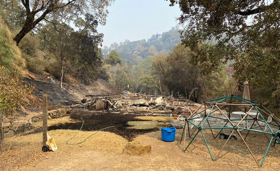 2020 wildfires