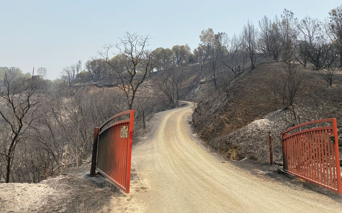 2020 wildfires burn six UC Natural Reserves; seventh threatened 2