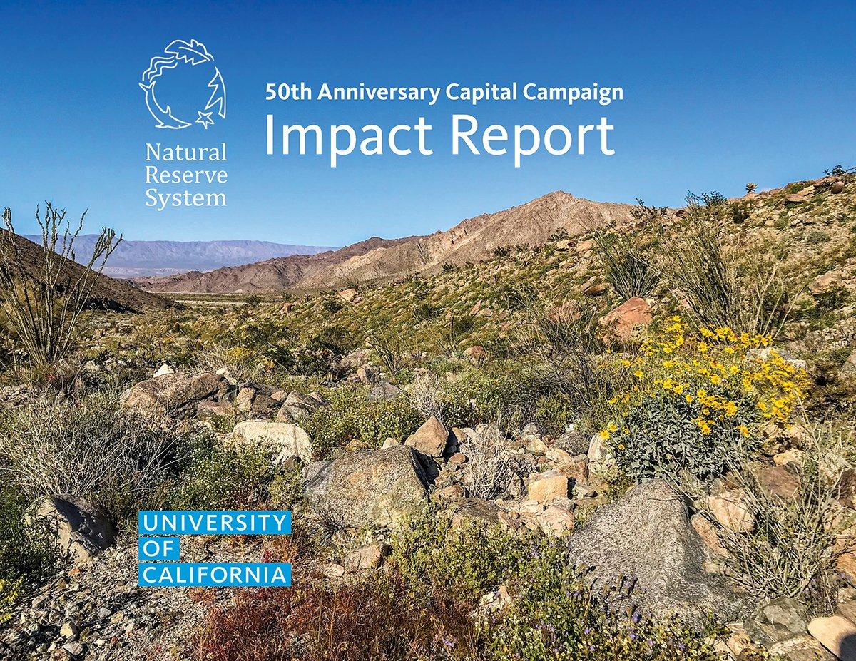 capital campaign report