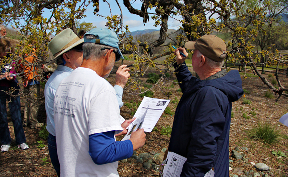 Sedgwick training California Phenology Project