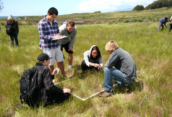Students describing a sample plot along a transect at Coal Oil Point for their Measuring the Environment class.