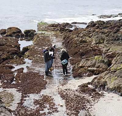 Students conduct a transect at the NRS's Bodega Marine Reserve. Image credit: Lobsang Wangdu