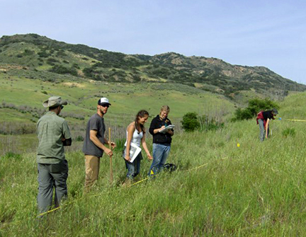 Students in the spring 2010 supercourse conduct a transect on Santa Cruz Island. Image courtesy Hilary Walecka