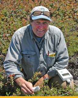 Biologist Michael Vasey measuring conductance on manzanitas. This patch of maritime chaparral is located at a Pajaro Hills reserve managed by the Elkhorn Slough Foundation. Photo by Michal Shuldman, UC Berkeley.