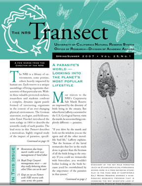 Vol. 25, No.1 ( Spring/Summer 2007 )